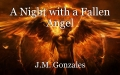 A Night with a Fallen Angel