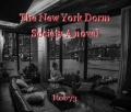 The New York Dorm Society A novel