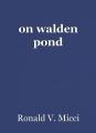 on walden pond