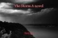 The Storm A novel