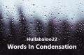 Words In Condensation