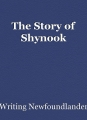 The Story of Shynook