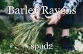 Barley Ravens