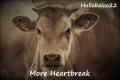 More Heartbreak