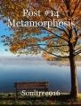 Post #14 Metamorphosis