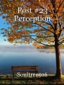 Post #23 Perception