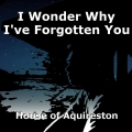 I Wonder Why I've Forgotten You