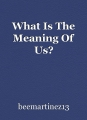 What Is The Meaning Of Us?