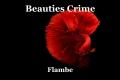 Beauties Crime