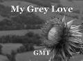 My Grey Love