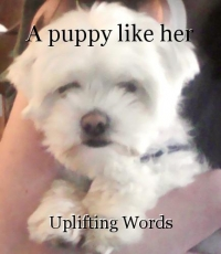 A puppy like her