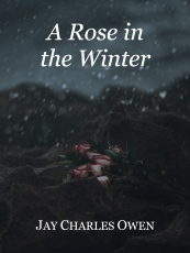 A Rose in the Winter