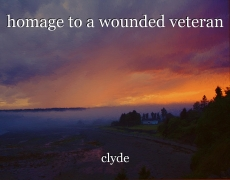 homage to a wounded veteran