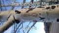 Trancendent Me