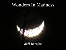 Wonders In Madness