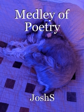 Medley of Poetry