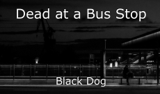 Dead at a Bus Stop