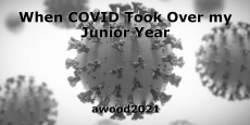 When COVID Took Over my Junior Year
