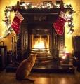 Christmas Musing