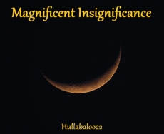 Magnificent Insignificance