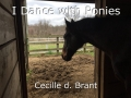 I Dance with Ponies