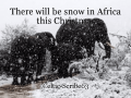 There will be snow in Africa this Christmas