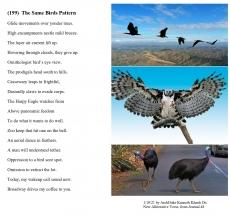(199)  The Same Birds Pattern