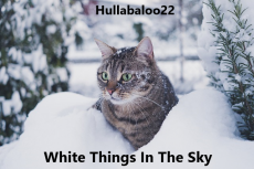White Things In The Sky