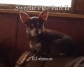 Sweetie Pie - Part II