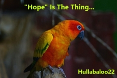 """""""Hope"""" Is The Thing..."""