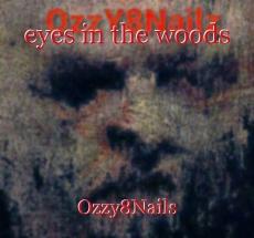 eyes in the woods
