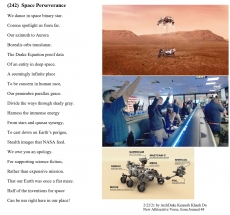 (242) Space Perseverance