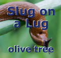 Slug on a Lug