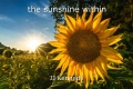 the sunshine within