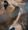 My Seething Soul