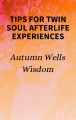 Tips for Twin Soul Afterlife Experiences