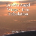 Broken Angel Wings - Into Tribulation