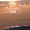 Broken Angel Wings - Into Tribulation