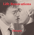 Life Renovations