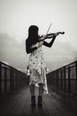 My Wife's Damn Violin