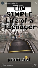 The SIMPLE Life of a Teenager