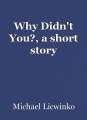 Why Didn't You?, a short story