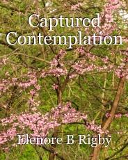 Captured Contemplation