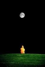 Incidental Moon