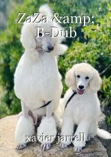 ZaZa & B-Dub