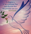 Story of one dove
