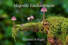 Majestic Enchantment