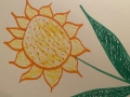 The Sunflower Diaries