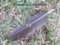 Peaceful Gratitude