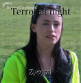 Terror at night